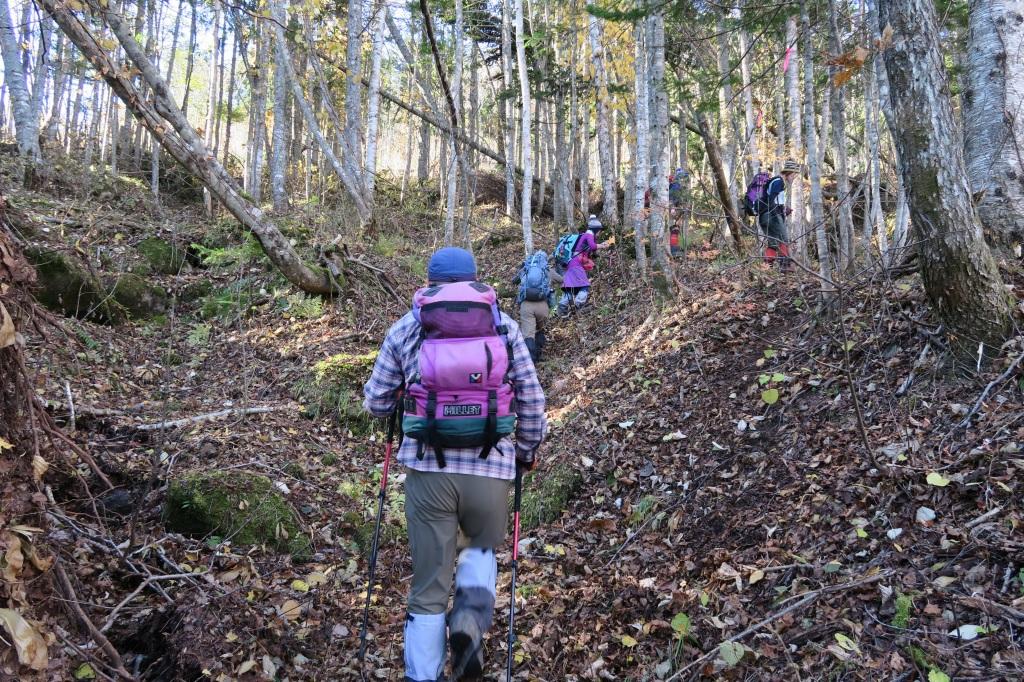 恵庭岳西峰と本峰、10月22日-西峰まで編-_f0138096_14272891.jpg