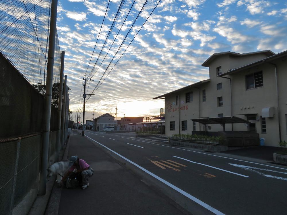 秋の空っていい感じ (^o^)_c0049299_22114714.jpg
