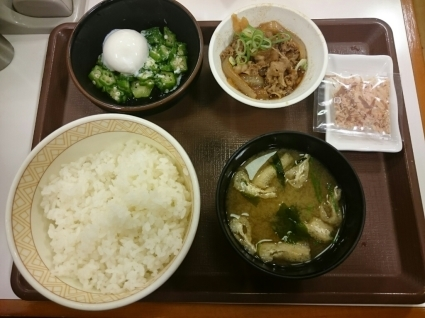 10/24  まぜのっけごはん朝食¥320@すき家_b0042308_08205033.jpg