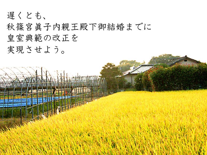 b0133911_1491312.jpg