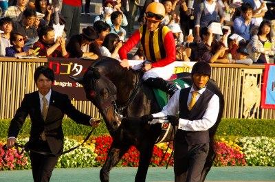 GI馬5頭出走の富士Sは、昨年の2歳王者ダノンプラチナが制す_b0015386_22525783.jpg