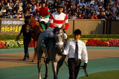 GI馬5頭出走の富士Sは、昨年の2歳王者ダノンプラチナが制す_b0015386_22551591.jpg