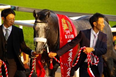 GI馬5頭出走の富士Sは、昨年の2歳王者ダノンプラチナが制す_b0015386_2256241.jpg