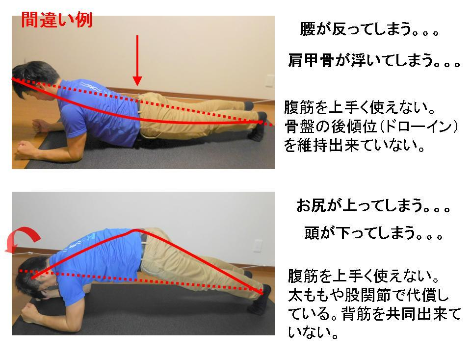 体幹トレーニングの効果的な方法(フロントブリッジ)_c0362789_10193525.jpg