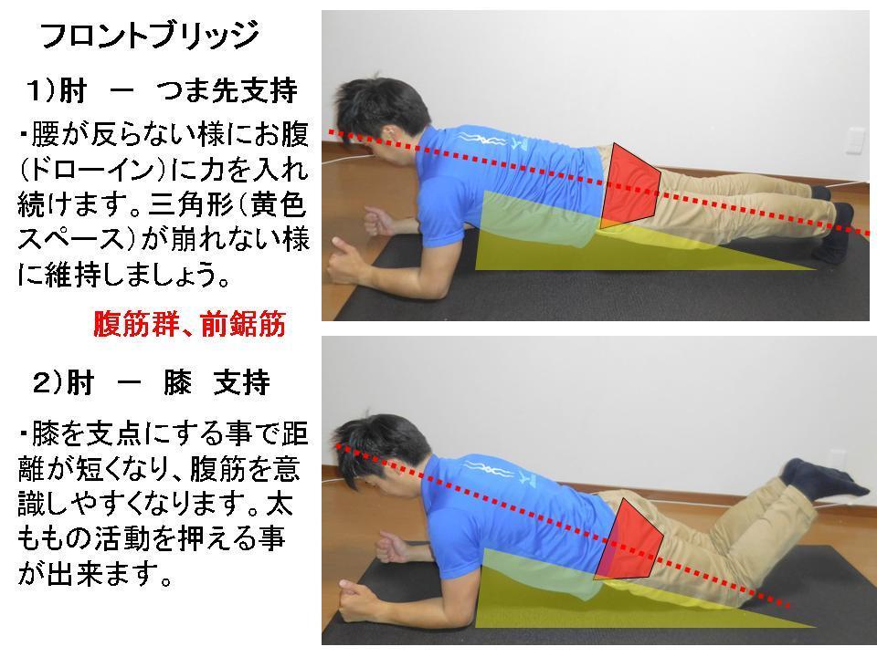 体幹トレーニングの効果的な方法(フロントブリッジ)_c0362789_10222043.jpg