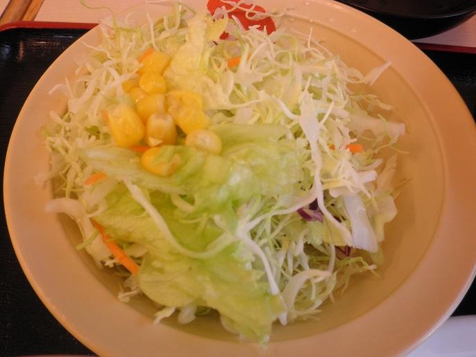 松屋の牛焼肉定食    布施南店_c0118393_9355161.jpg