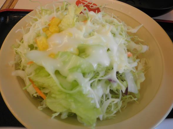 松屋の牛焼肉定食    布施南店_c0118393_9392822.jpg