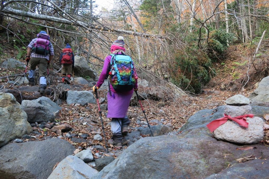 恵庭岳西峰と本峰、10月22日-下山編-_f0138096_14165687.jpg