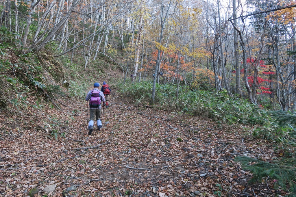 恵庭岳西峰と本峰、10月22日-下山編-_f0138096_1417339.jpg