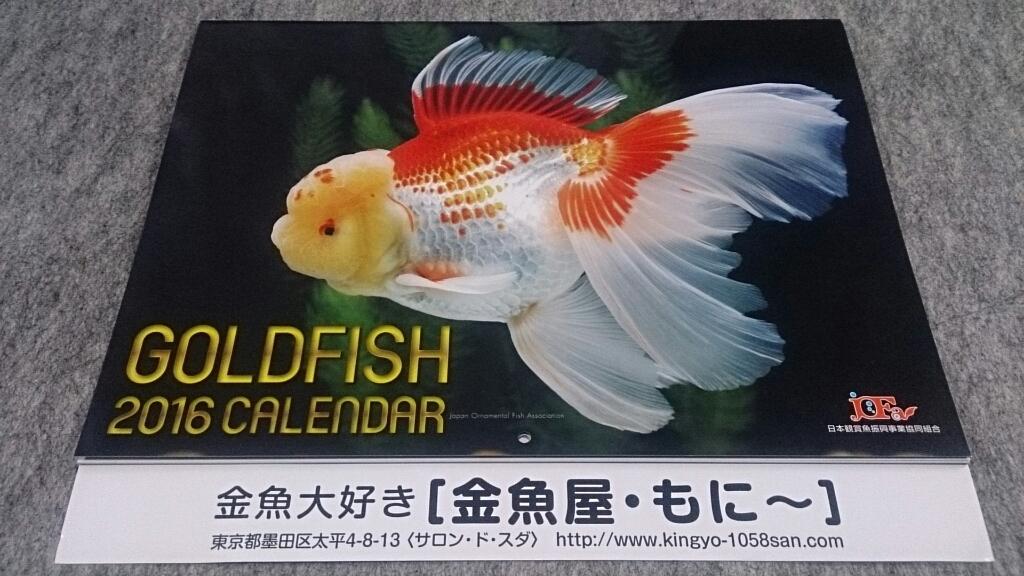 金魚カレンダー今年もゲット!_b0298605_02063897.jpg
