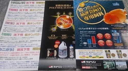 金魚カレンダー今年もゲット!_b0298605_02064478.jpg