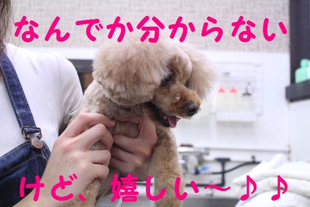 さむ~い!!_b0130018_23563777.jpg