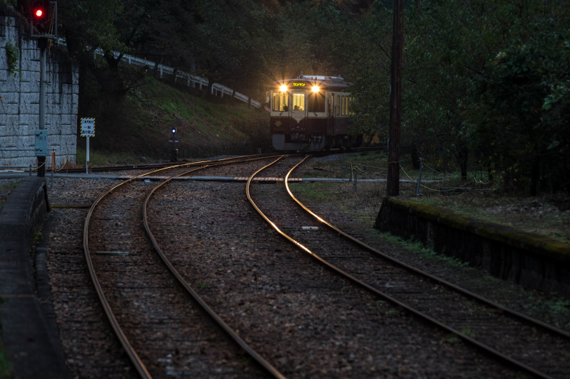 Train  ・・・わたらせ渓谷鐵道・・・_f0333031_06135267.jpg