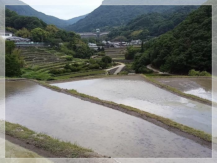 小豆島2日目_b0025947_19282740.jpg