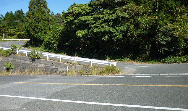 大山道を歩く(溝口道)_b0156456_929994.jpg