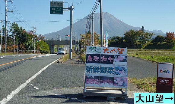 大山道を歩く(溝口道)_b0156456_9322217.jpg