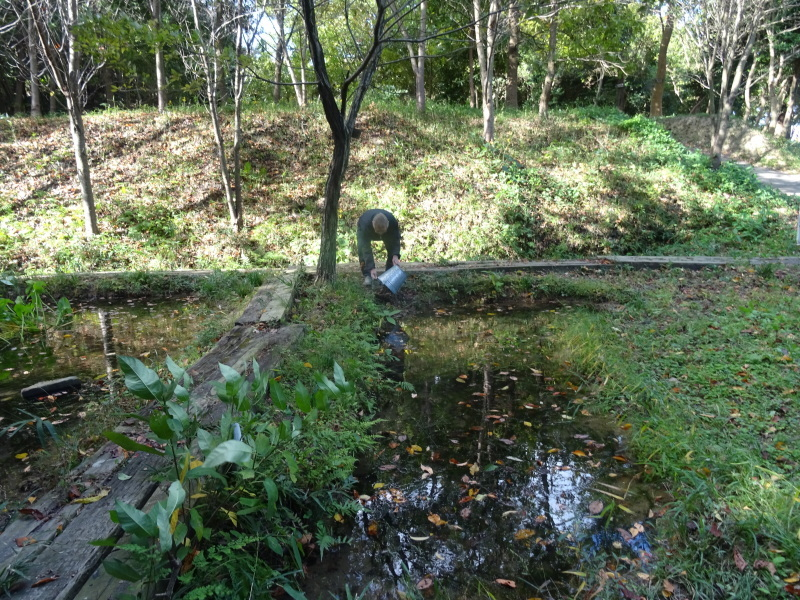 椿の森の草刈り in うみべの森_c0108460_18331029.jpg