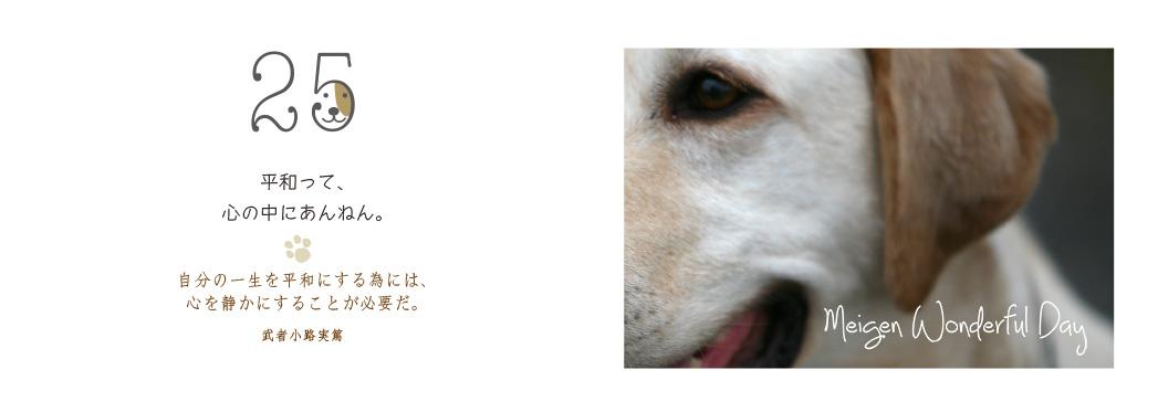 f0355165_1431164.jpg