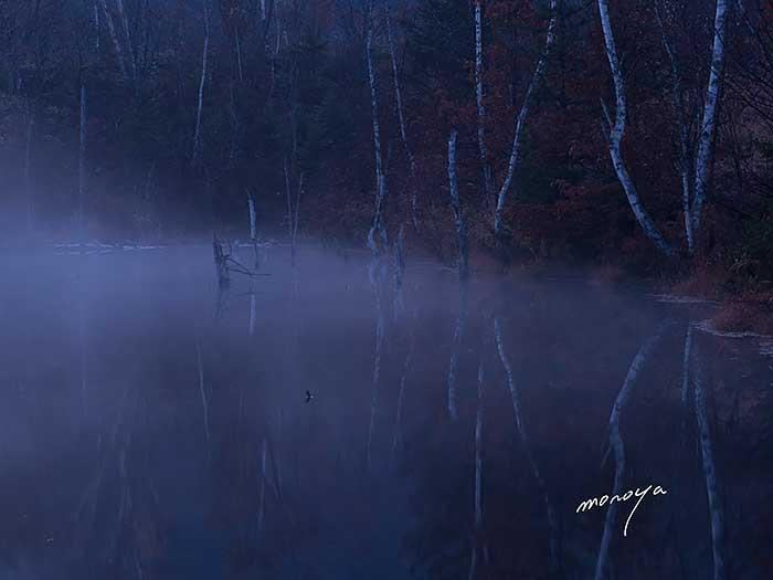 晩秋のまいめの池_c0085877_6284264.jpg