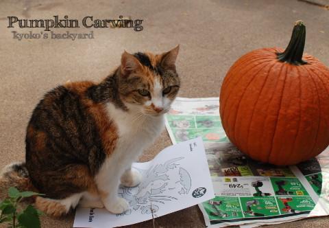 かぼちゃのランタン 2015_b0253205_01443169.jpg