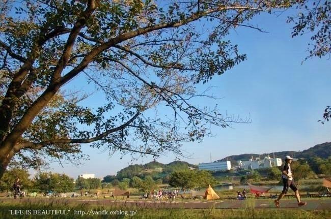 多摩川をお散歩_d0083623_14234326.jpg
