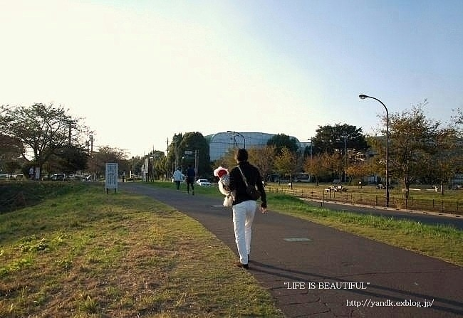 多摩川をお散歩_d0083623_14424367.jpg