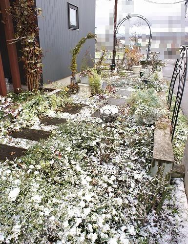 雪が降り始めました_f0205733_01190521.jpg
