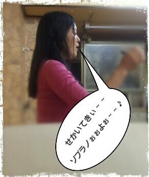 c0090535_13371249.jpg