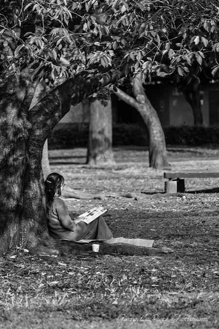 風景の写真 秋の木陰の人_b0133053_012990.jpg