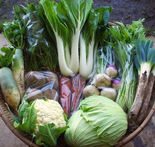 今週の野菜セット(10/27~10/31着)_c0110869_13265932.jpg