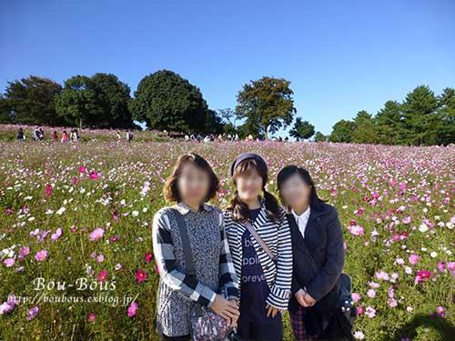 秋の昭和記念公園 その2 コスモスの丘・他_d0128697_2313068.jpg