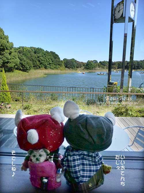秋の昭和記念公園 その1_d0128697_2411225.jpg
