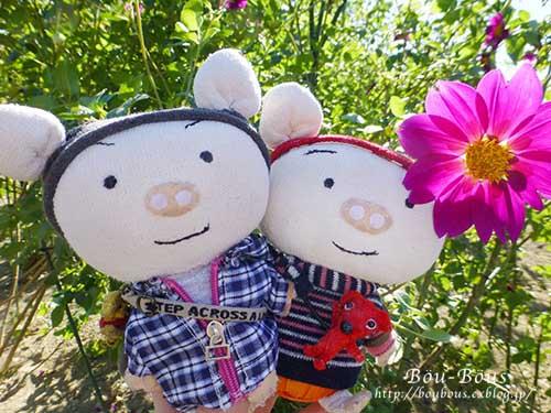 秋の昭和記念公園 その1_d0128697_2411768.jpg