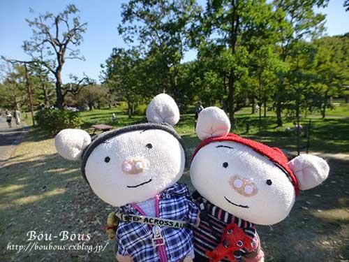 秋の昭和記念公園 その1_d0128697_2412275.jpg