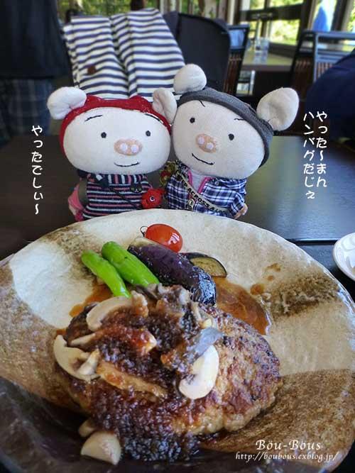秋の昭和記念公園 その1_d0128697_241418.jpg