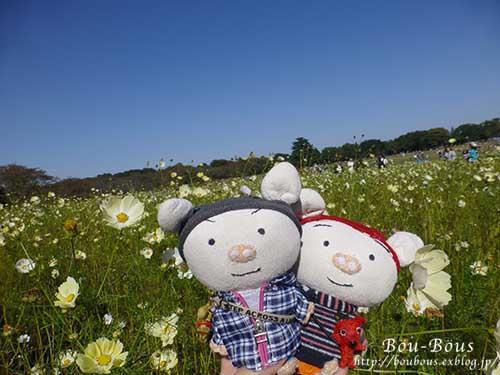 秋の昭和記念公園 その1_d0128697_2414951.jpg