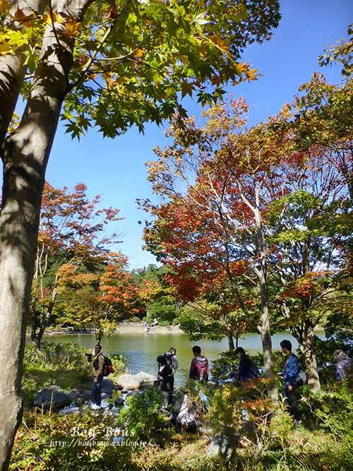 秋の昭和記念公園 その1_d0128697_2575361.jpg