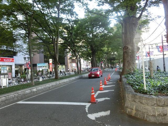 府中市(東京都)の全国初の取組み 道路や並木の点検、補修、清掃、剪定等を「包括管理委託」_f0141310_7495399.jpg