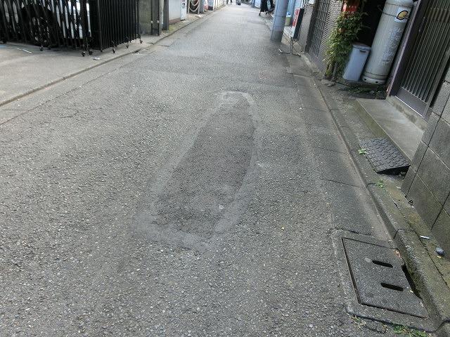府中市(東京都)の全国初の取組み 道路や並木の点検、補修、清掃、剪定等を「包括管理委託」_f0141310_750121.jpg