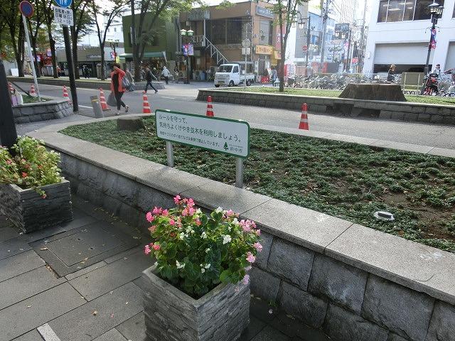 府中市(東京都)の全国初の取組み 道路や並木の点検、補修、清掃、剪定等を「包括管理委託」_f0141310_750481.jpg