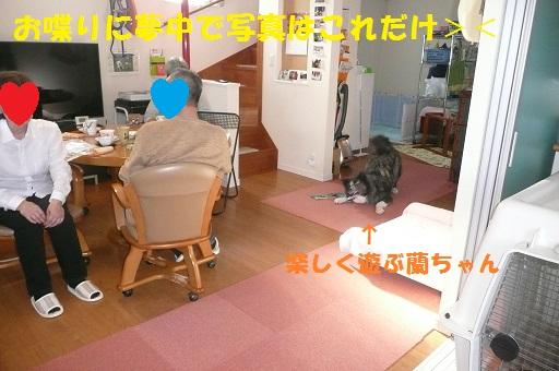 f0121712_7573673.jpg