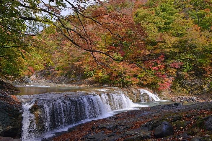 浅布渓谷の紅葉が見頃 : 栗駒山...