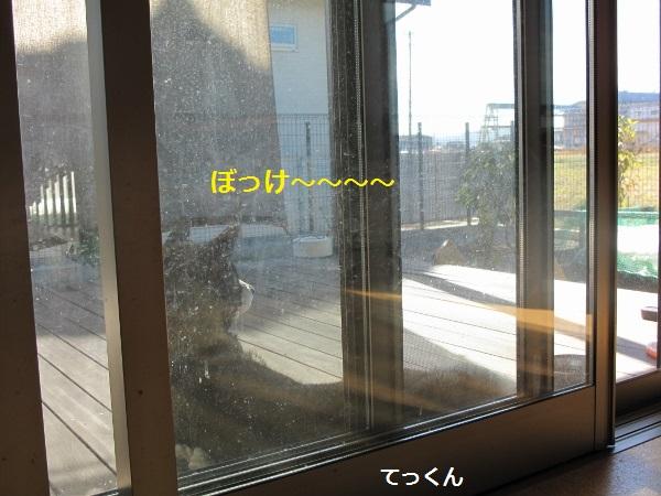 f0143123_833796.jpg