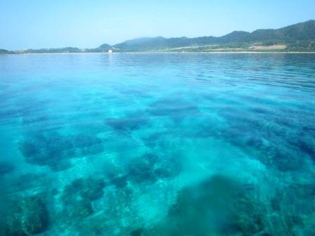 Summer again !!_a0189838_18145785.jpg