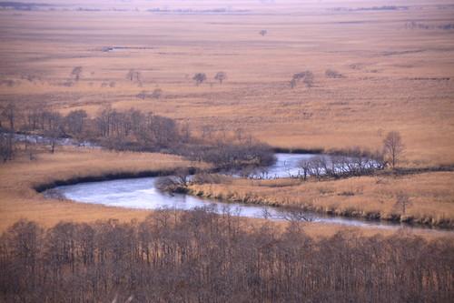 恒例・秋の湿原パトロール行ってきた 10月27日_f0113639_16124121.jpg