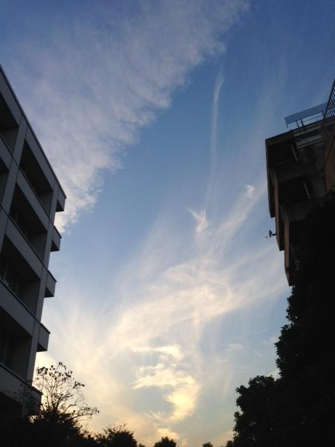 《今日の空と雲》風のお絵かき.。o○_b0298740_13262304.jpg