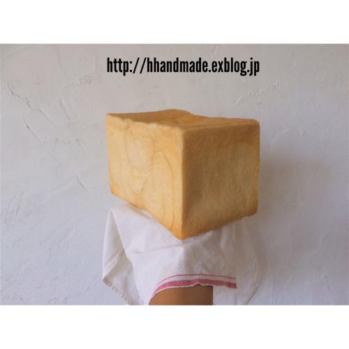 b0171943_13382718.jpg