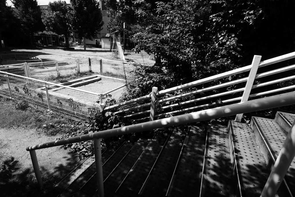 午後の公園_e0024958_17570815.jpg