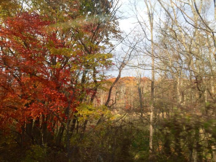 秋から冬へ_b0131865_01551056.jpg