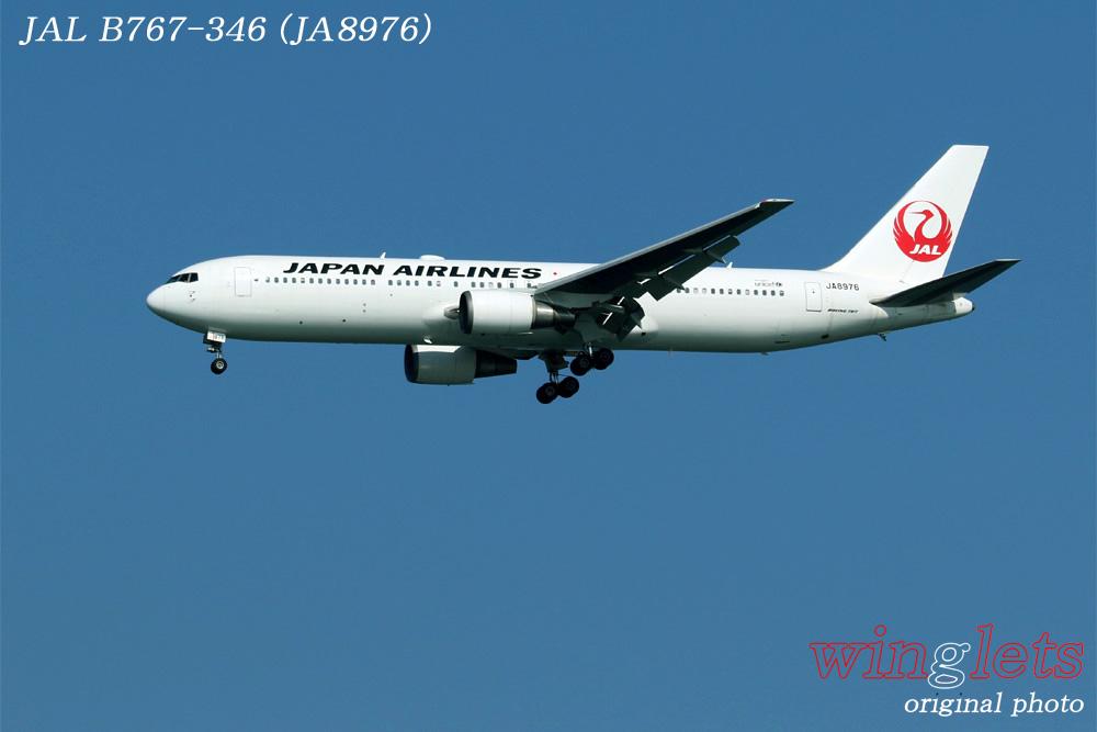 '15年 川崎・浮島公園レポート・・・JAL/JA8976_f0352866_2328562.jpg